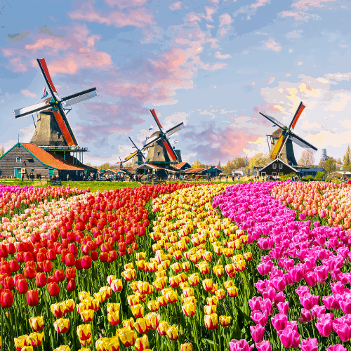 100+ Beautiful Dutch Girl Names and Their Meanings